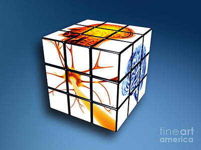 Photograph - Brain Power Cube Concept by Spl