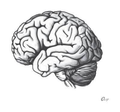 Pop Art Drawings - Brain shift by Del Gaizo