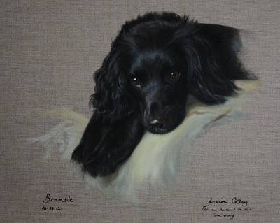 Dog Painting - Bramble  by Lucinda Coldrey