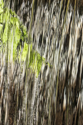 Photograph - Branch In Waterfall by Gregory Scott