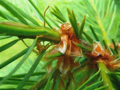 Pine Needles Photograph - Branch Of Pine - Digital Painting Effect by Rhonda Barrett