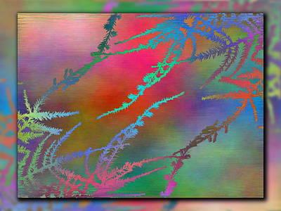 Branches In The Mist 28 Art Print by Tim Allen