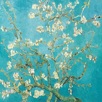 Painting - Branches Of An Almond Tree by Florene Welebny