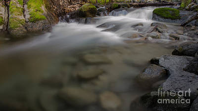 Photograph - Brandy Creek Bottom by Along The Trail