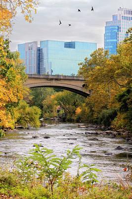 Brandywine Creek Art Print