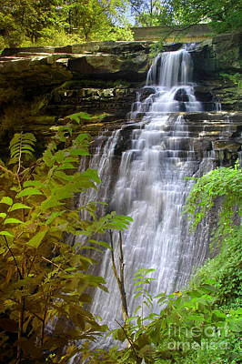 Brandywine Falls Of Cuyahoga Valley National Park Waterfall Water Fall Print by Jon Holiday
