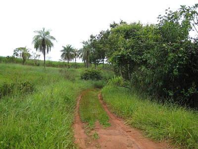 Photograph - Brasil Rural 3 by Maria Akemi  Otuyama