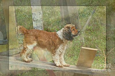 Parti Photograph - Brave Little Bear by Debbie Portwood