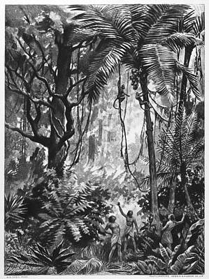 Amazon Jungle Painting - Brazil Forest Indians by Granger