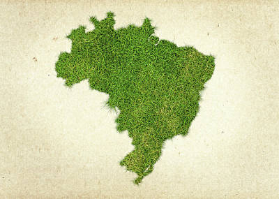 Sao Paulo Photograph - Brazil Grass Map by Aged Pixel