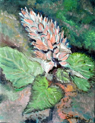 Painting - Brazillian Plume by Calliope Thomas