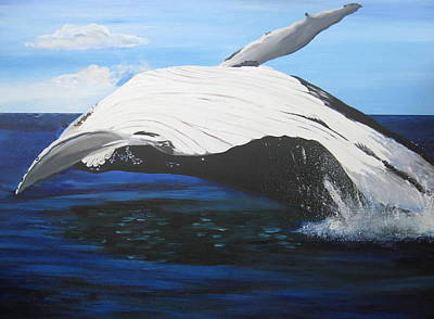 Breaching Whale Art Print by Cathy Jacobs