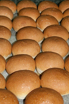Bread Making Photograph - Bread (panini), Italian Cooking, Italy by Nico Tondini