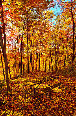 Picnic Table Photograph - Break Time by Phil Koch