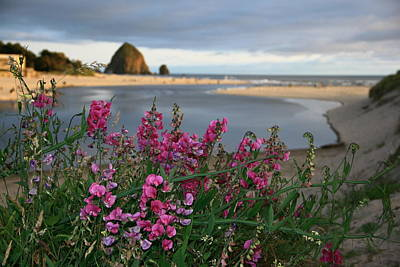 Photograph - Breakers Point Oregon by Steven A Bash