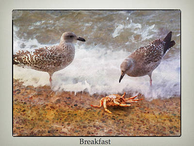 Photograph - Breakfast by Karo Evans