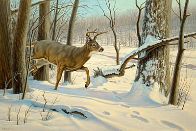 White Tail Deer Painting - Breaking Cover-whitetail by Paul Krapf