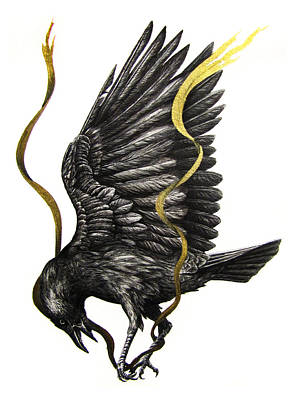 Blackbird Drawing - Breaking Point by Danielle Trudeau