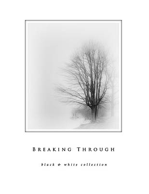 Breaking Through  Black And White Collection Art Print