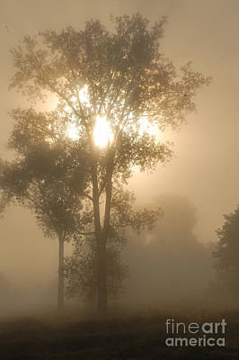 Photograph - Breaking Through The Fog by Larry Ricker