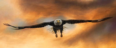 Eagle In Flight Photograph - Breakthrough by Jai Johnson