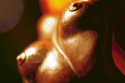 Photograph - Breast Bronze by Selke Boris