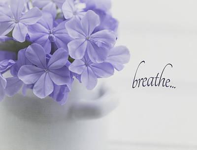 Photograph - Breathe by Kim Hojnacki