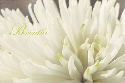 Photograph - Breathe Spring by Jenn Bowers
