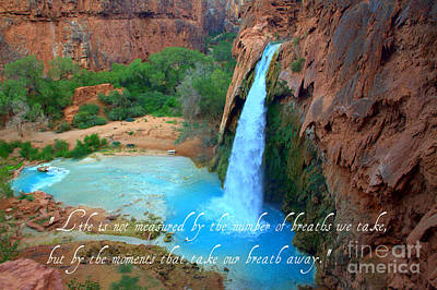 Photograph - Breaths We Take by Jim McCain