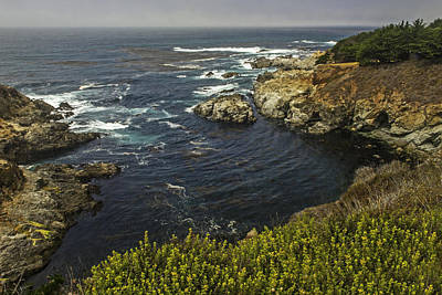 Photograph - Breathtaking View From The Pacific Coast Highway   California by Willie Harper