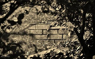 Photograph - Brick And Ivy In Sepia by Rob Hans