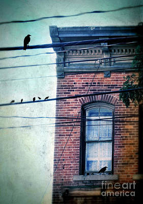 Photograph - Brick Building Birds On Wires by Jill Battaglia