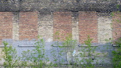 Photograph - Bricked Windows 2 by Anita Burgermeister
