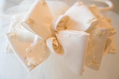 Photograph - Bridal Veil 2 by Teresa Blanton