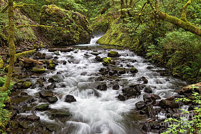 Photograph - Bridal Veil Creek by Stuart Gordon