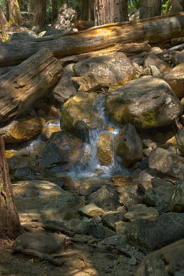 Photograph - Bridalveil Creek I by Gene Norris