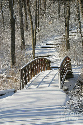 Gingrich Photograph - Bridge 0004 by Gary Gingrich Galleries
