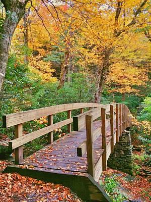 Smoky Mountains Photograph - Bridge Along The Tanawaha Trail by Frank Montoya