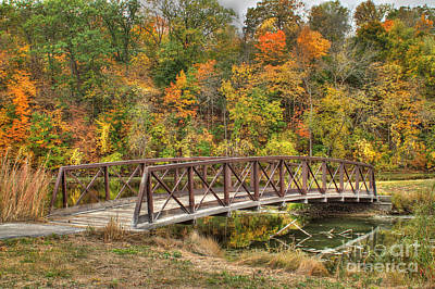 Bridge Amongst Autumn Colors Art Print