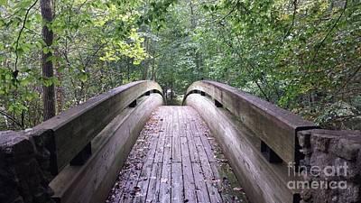 David Gray Photograph - Bridge At Crabtree Falls by David Gray