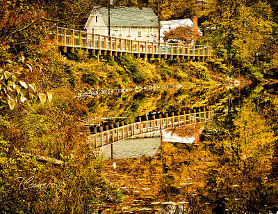 Bridge At C'ville Art Print by Tom Cameron