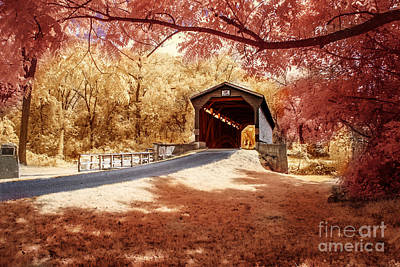 Photograph - Bridge At Fairhill by Stacey Granger