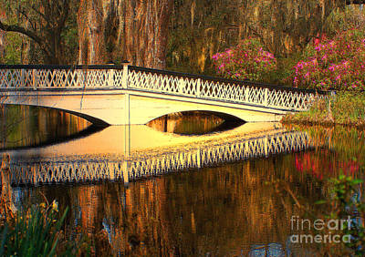Photograph - Bridge At Magnolia Plantation by Kathy Baccari