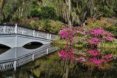 Bridge Crossing Pond Springtime Azalea Art Print