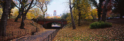 Bridge In A Park, Central Park Art Print by Panoramic Images