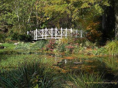 Photograph - Bridge In Autumn by Nance Larson