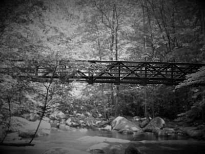 Photograph - Bridge In Forest by Gary Smith