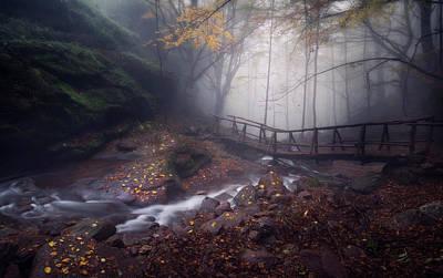 Bridge In Mystical Forest. Art Print