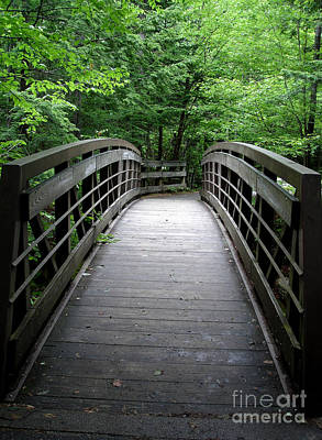 Photograph - Bridge In The Woods by Kerri Mortenson