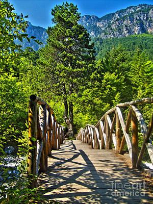 Photograph - Bridge by Nina Ficur Feenan